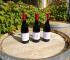 Agriturismo Cascina Dani - I vini di Villa Giada