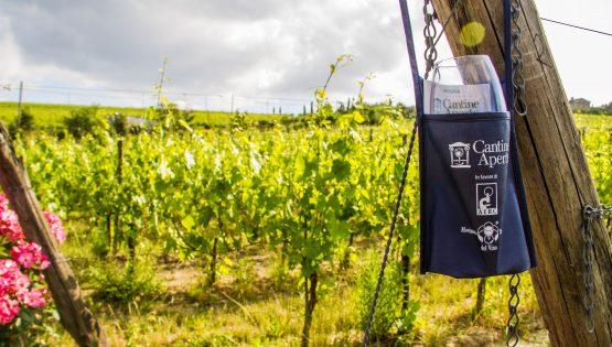 Movimento Turismo del Vino: Cantine Aperte 2018