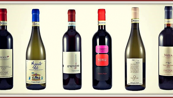 Degustazione di vini Gianni Doglia