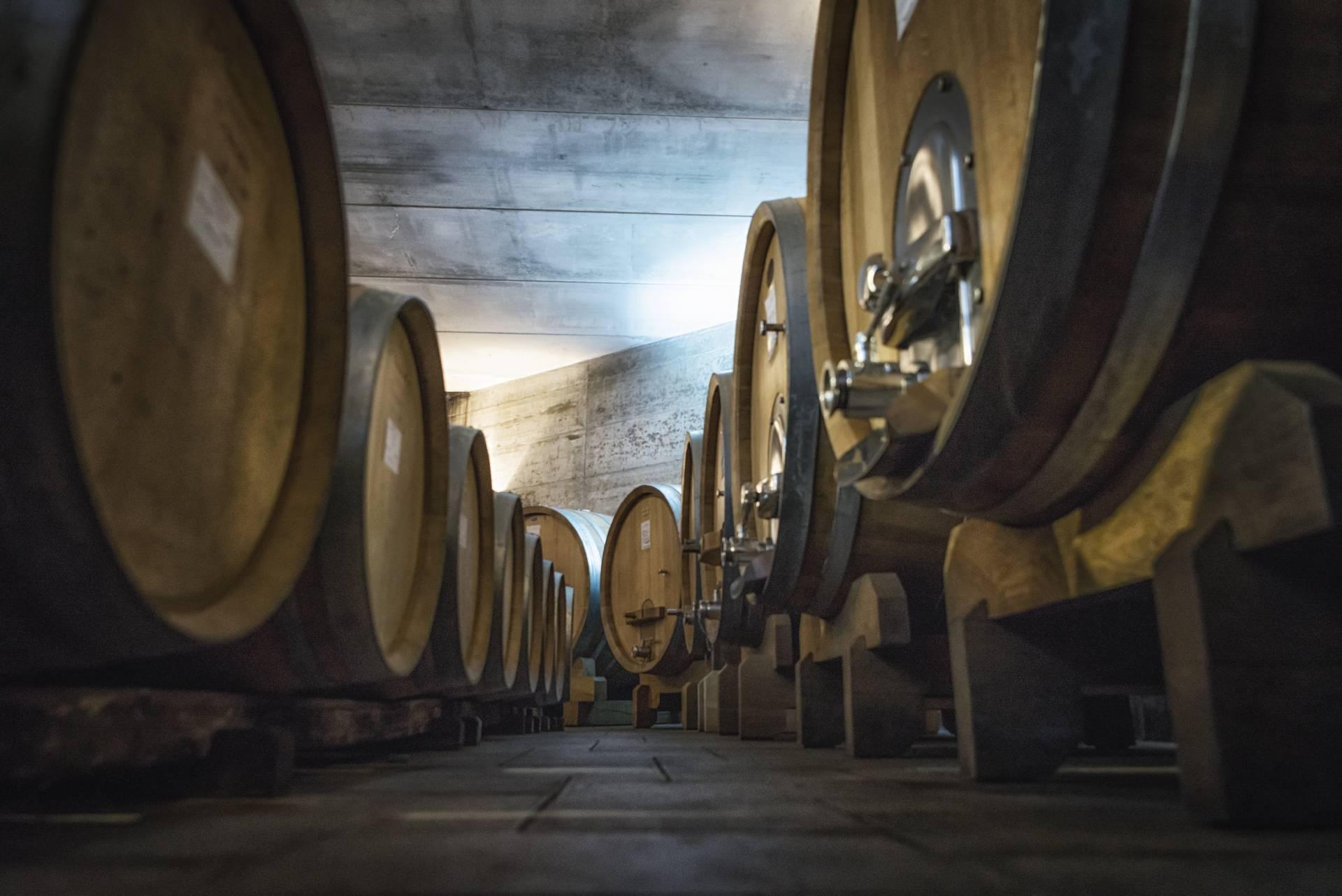 Le Strette Vini - Le botti in rovere