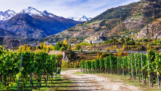 Regioni di gusto: Valle d'Aosta e i suoi alti vini