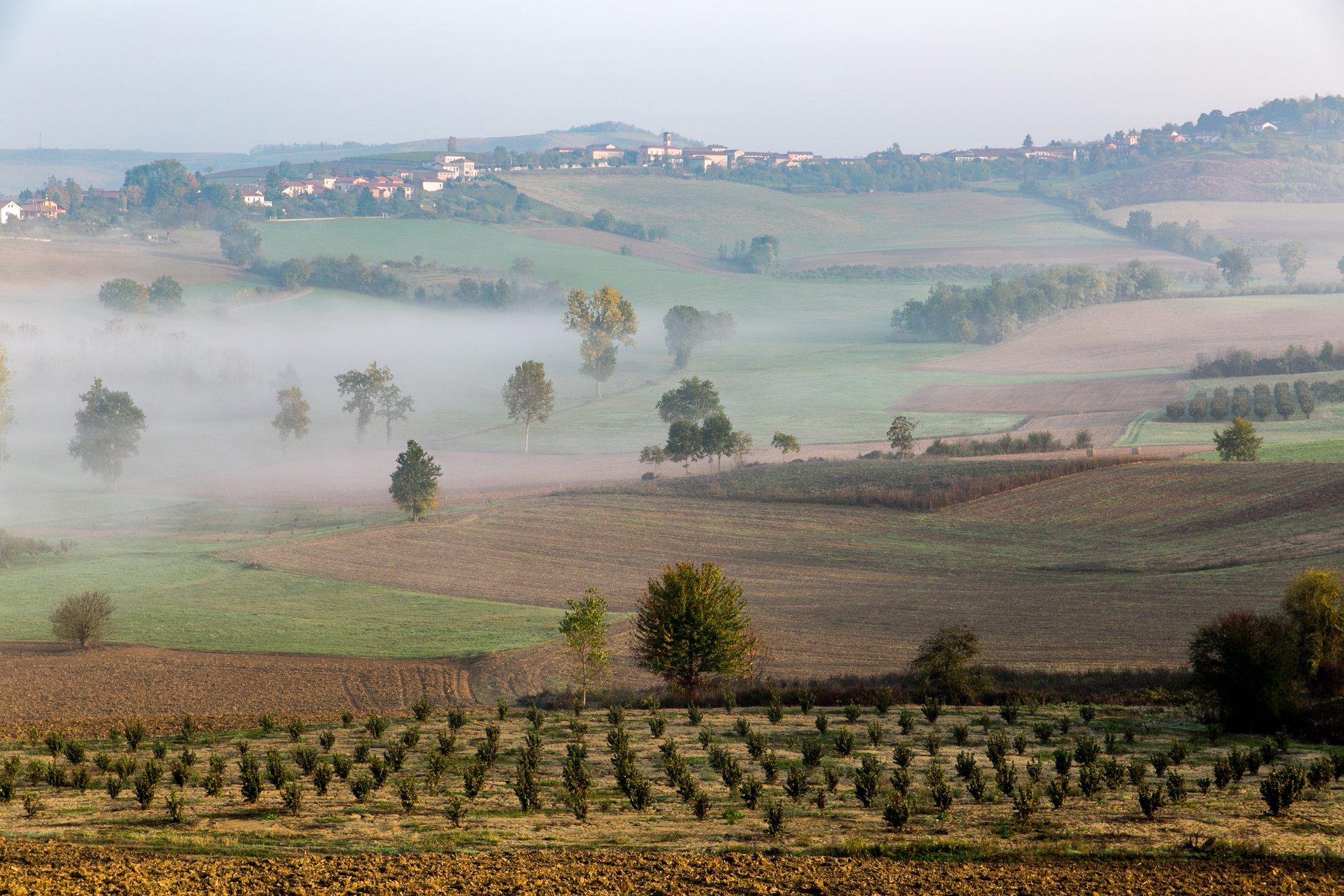 itaca monferrato - eventi